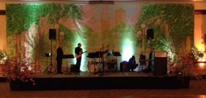 I got a shot while we were setting up of the beautiful hand painted stage back drop that highlighted the theme.